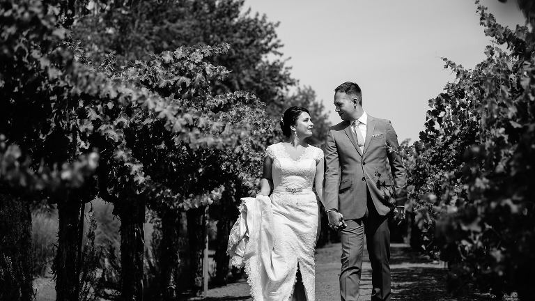 Black and white portrait of bride and groom walking hand in hand through vineyard at Vintners Inn Santa Rosa California